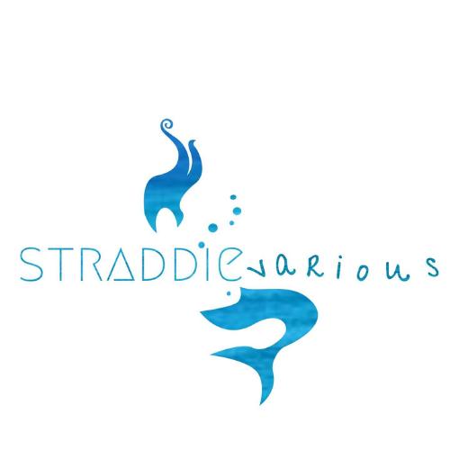 Straddievarious Gallery